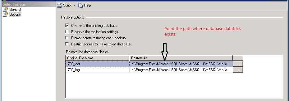 Create a Full Database Backup (SQL Server)