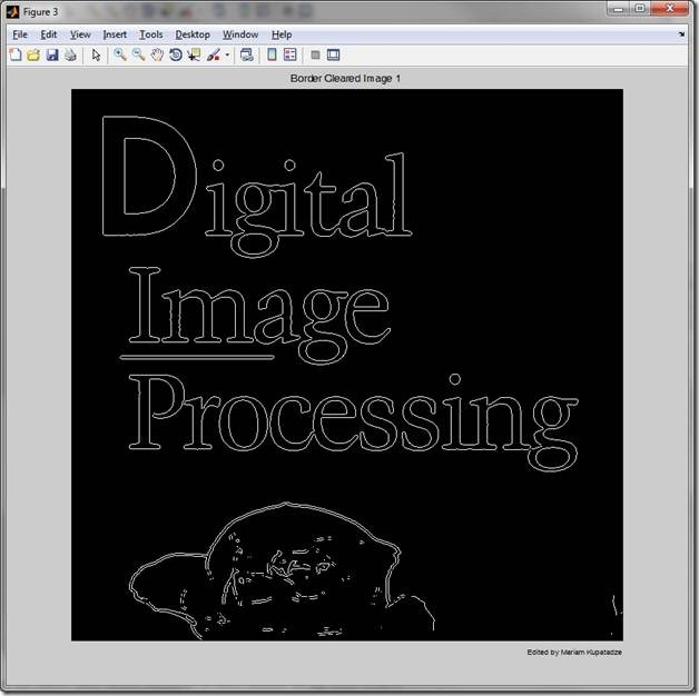Digital_Image_Processing_Bordered_Cleared_Image_1