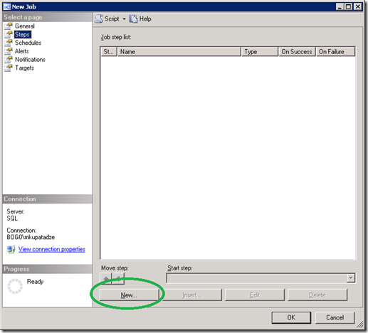 SQL Server New Job Steps Tab