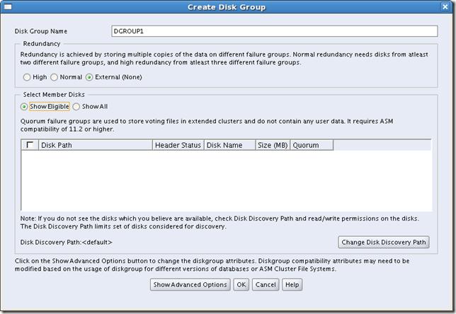 Screenshot-Create Disk Group