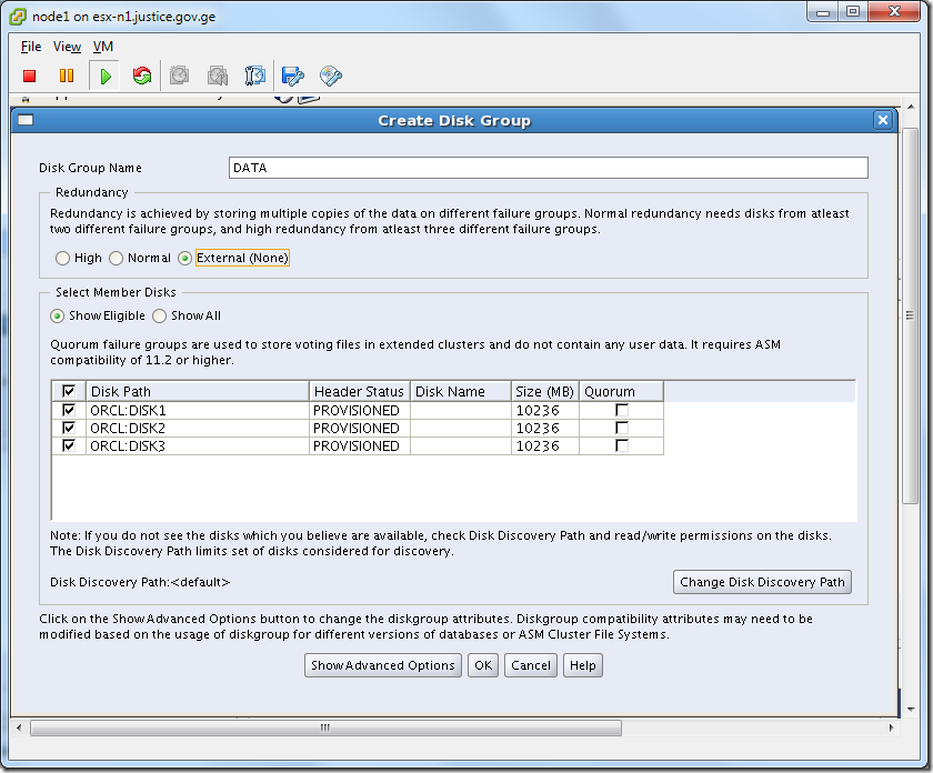Virtual Machine_Grid_Installation_asmca_Create_Disk
